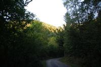 La Sapiniere de Laprede vers Lencoueu