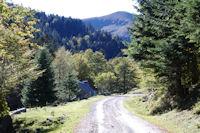 Le Chemin de Sarradaus, au loin la Hourgue de la Fousserette