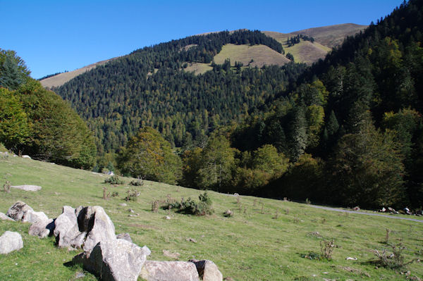Le Sommet du Templa ou de Cornudère au dessus de la Sapinière de Laprède