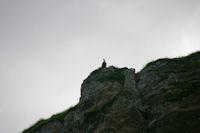 Un vautour fauve au dessus du ruisseau d'Ourey