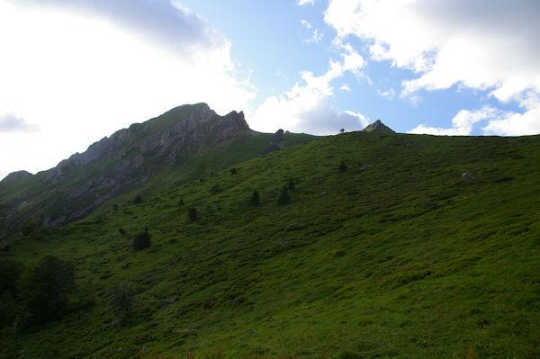 Le Pic du Midi d_Arrens et le Pic Arrouy à gauche, le Pic de Mousquès à droite, depuis le haut du Bois de la Sabardounère