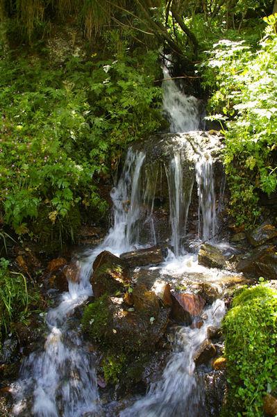 Jolie cascade du ruisseau des Plaas