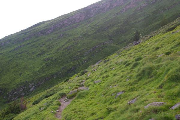 Le chemin transversal passant le vallon du ruisseau d_Ourey