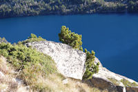 Contrastes de couleurs en remontant la Montagne des Laquettes vers les cretes de Barris d'Aubert