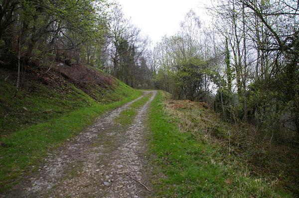 Le large chemin pour monter au Col de Liar au dessus d&#39Arcizans Dessus