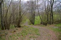 Un joli chemin arbore au dessus de Gaillagos
