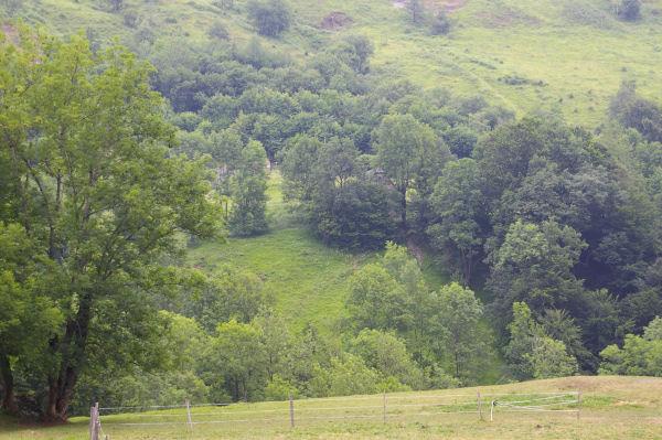 La grange de Las Coureyette cachée dans les arbres