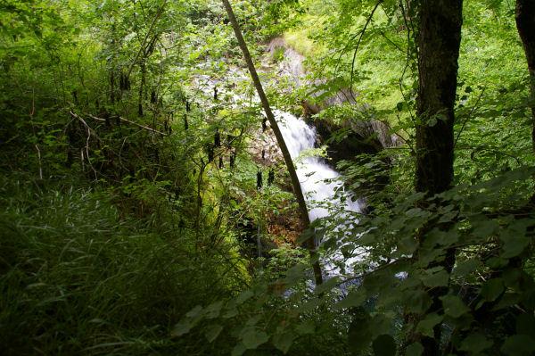 Une cascade du gave d&#39Arrens vers Peyrariose