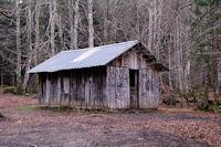 La cabanne du bois de Labed