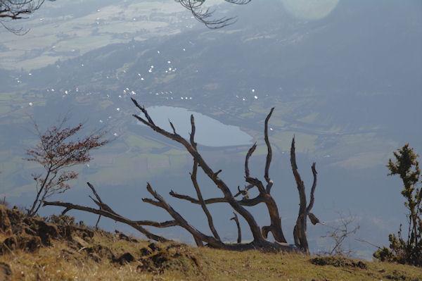 Le lacquet d_Arcizans Avant depuis le Pic d_Arragnat