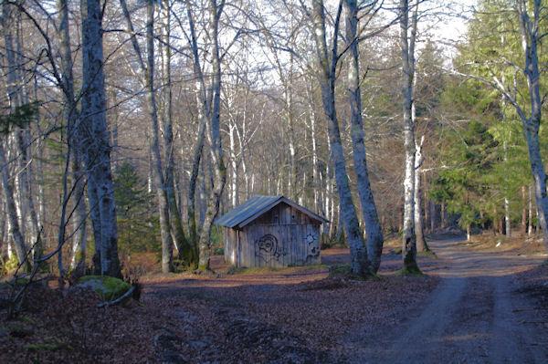 La cabanne du bois de Labèd