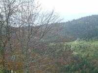 La cabane de Marioulete depuis les flancs du Pic de azes