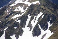 Un vautour se detache sur le neve