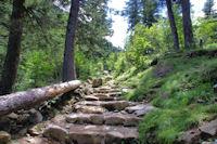 Le chemin dalle dans le Cote de Gaube