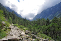 Le chemin avant d_arriver au Lac de Gaube