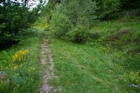 Le chemin entre Les Goules et l'Aouyassa