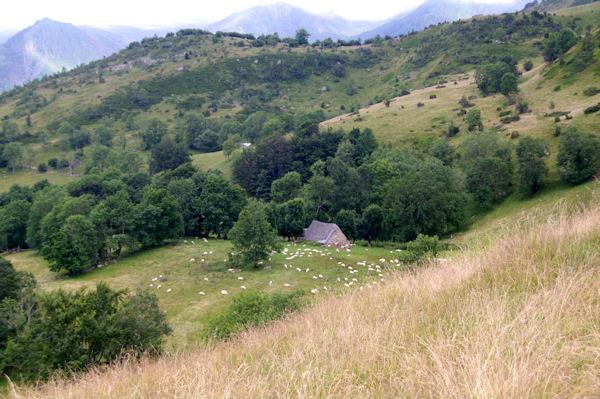 Une grange aux Balagnas depuis le Turon des Aulhès