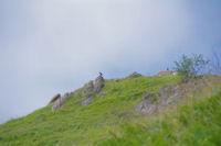 Le sommet du Pic de Predouset