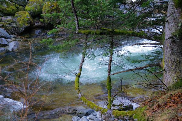 Le Gave du Marcadau sous la cascade d_Escane Gat