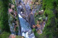 Le Gave du Marcadau sous la cascade du Ceriset