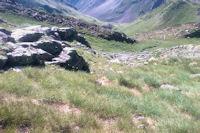 La descente entre Couyeou Maou et le Paletou