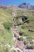 Le ruisseau de Bassia