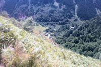 La vallee du Gave d'Arrens au confluent avec le ruisseau de Labas