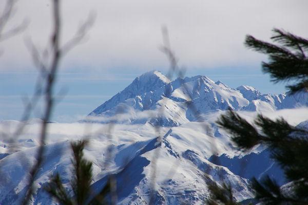 Le Pic du Midi de Bigorre depuis la forêt au dessus de Couradère
