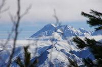 Le Pic du Midi de Bigorre depuis la foret au dessus de Couradere
