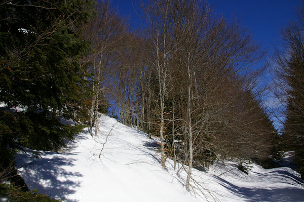 En remontant vers le Col de la Serre