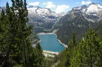 Le lac d'Oredon vu depuis la pinede sous le Soum de Monpelat