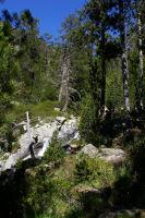 Le ruisseau descendant des Laquettes
