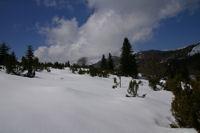 Sous le Soc en direction du Col de Coraduque