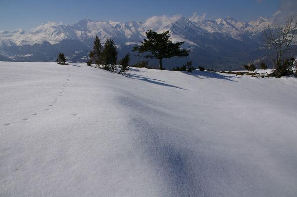 Pic de Cabaliros, Pic du Midi d&#39Arrens et Balaitous depuis la crête du Soum de la Pène