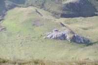 Une cabane de berger a Peyre Nere