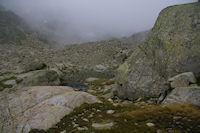 Un petit laquet sous les cretes d'Espade dans la brume