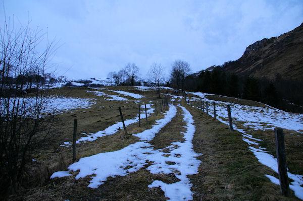 Le chemin au dessus du ruisseau de Caubère