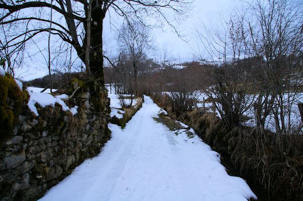 Le chemin au dessus du ruisseau de Caubère près de la grange Gite Péré