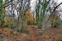 Le sentier descendant vers les Igues d_Aujols