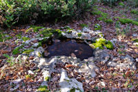 Une petit reservoir vers l'Igue de Mont Fouillous