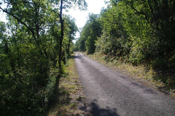 La route au dessus de Sarrou