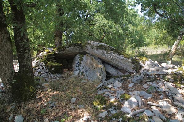 Un dolmen ecroulé sous le Pech de Fourès