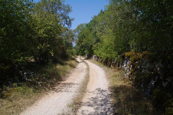 Le chemin menant à Fourès