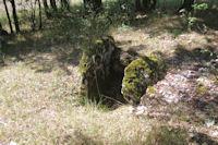Le dolmen sans table pres de Pechaud au bord de la D17