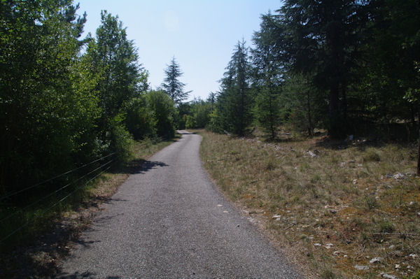 La route menant au Mas de Cornio