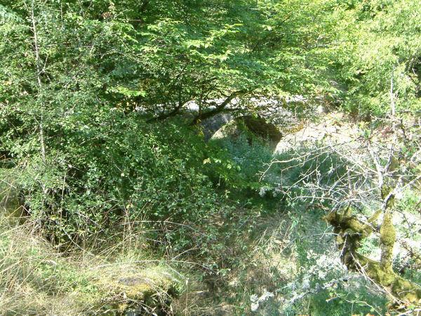 Pont sur l'Alzou