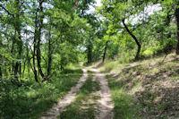 Le chemin vers Bouyges