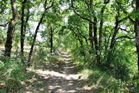 Le chemin vers les Grezettes