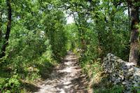 Le chemin vers Catouret
