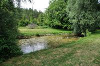 Le lac de Bournel